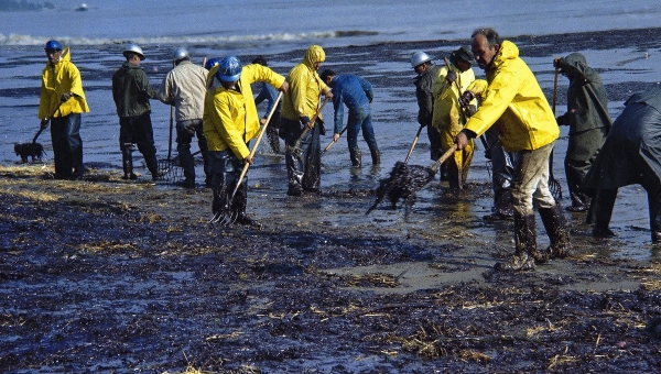 06 Feb 1969, Santa Barbara, California, USA --- In this Feb. 6, 1969, file photo, state forestry conservation crews gather up oil-soaked straw on a beach in Santa Barbara, Calif. Cleanup crews fanned out once again on Wednesday, May 20, 2015, after thousands of gallons of crude oil spilled from a broken pipe and flowed into the Pacific Ocean along the same stretch of coastline as the 1969 spill, which was the largest ever in U.S. waters at the time and is credited with giving rise to the American environmental movement.